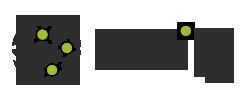 netify Logo